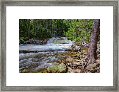 Romantic Forest Stream Framed Print by James BO Insogna