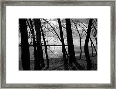 Framed Print featuring the photograph Romantic Lake by Valentino Visentini