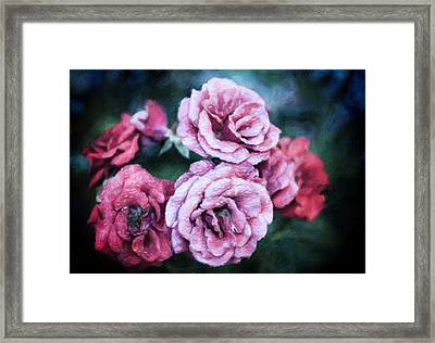 Romantic Night Roses Framed Print by Georgiana Romanovna