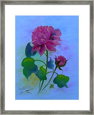 Romantic Peoni Framed Print by Micheal Giddens