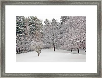 Framed Print featuring the photograph Romantic Skies Fresh Snow Scene by Aimee L Maher Photography and Art Visit ALMGallerydotcom
