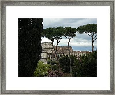 Rome Colliseum Framed Print by Tammy Forristall