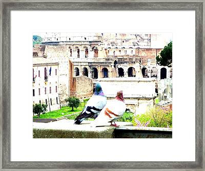 Rome Romance Framed Print by Mindy Newman