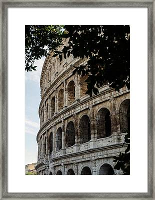 Rome - The Colosseum - A View 2 Framed Print by Andrea Mazzocchetti