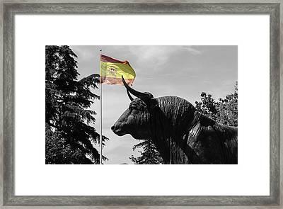 Ronda - Spain - Plaza De Toros Framed Print by Andrea Mazzocchetti