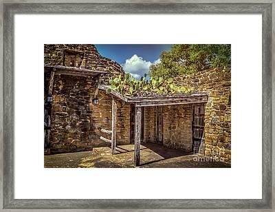 Roof Cacti Framed Print