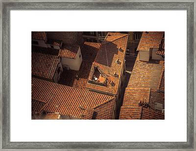 Roof Garden Framed Print by Chris Fletcher