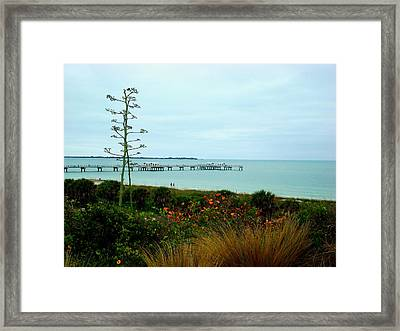 Roof Top View Framed Print