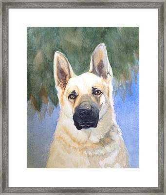 Rookie Framed Print by Marilyn Jacobson