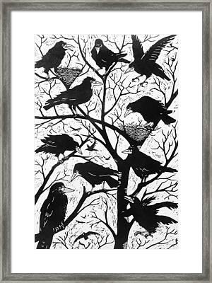 Rooks Framed Print