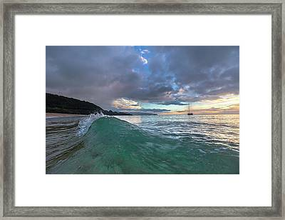 Rooster Curl Framed Print by Sean Davey