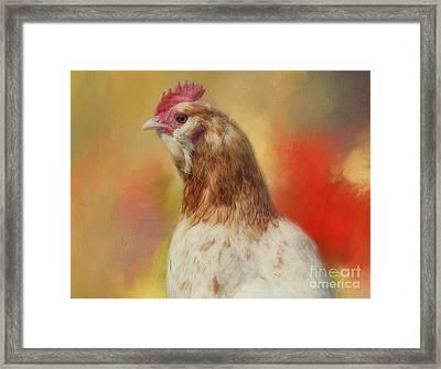 Rooster Framed Print by Kathleen Rinker