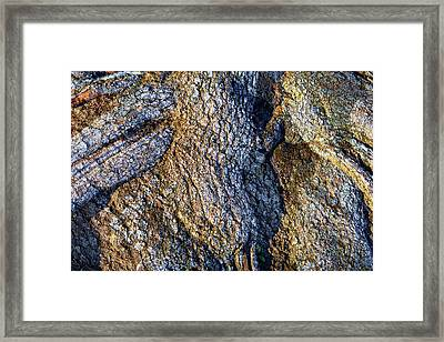 Framed Print featuring the photograph Root Waves by Glenn McCarthy Art and Photography