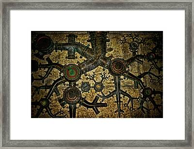 Roots Framed Print by Heather Applegate
