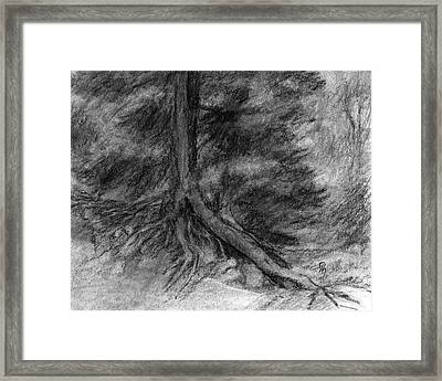 Roots I Framed Print by David King