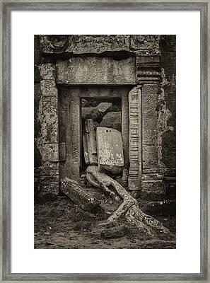 Roots In Ruins 2, Ta Prohm, 2014 Framed Print by Hitendra SINKAR