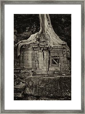 Framed Print featuring the photograph Roots In Ruins 5, Ta Prohm, 2014 by Hitendra SINKAR