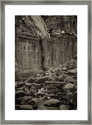 Framed Print featuring the photograph Roots In Ruins 6, Ta Prohm, 2014 by Hitendra SINKAR