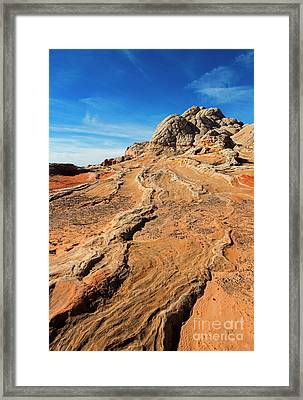 Roots Of Stone Framed Print by Mike Dawson