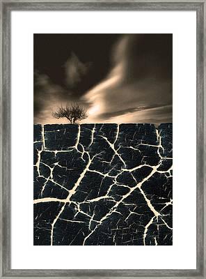 Roots Framed Print by Tara Turner