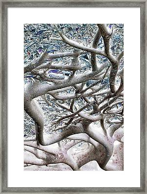 Roots With Attitude Framed Print