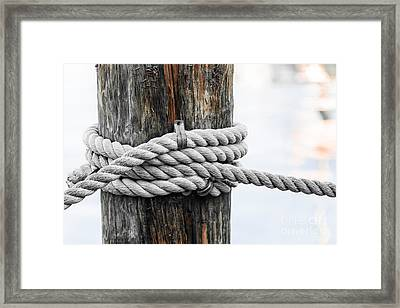Rope Fence Fragment Framed Print