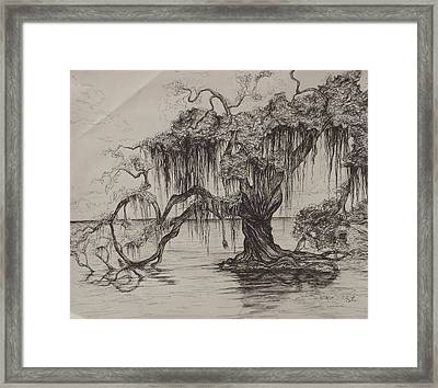 Rope Swing Framed Print by Sarah Lonthier