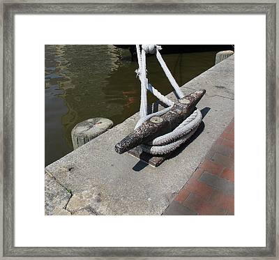 Roped Framed Print by Arlene Carmel
