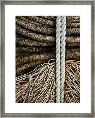 Ropes And Fishing Nets Framed Print by Carol Leigh