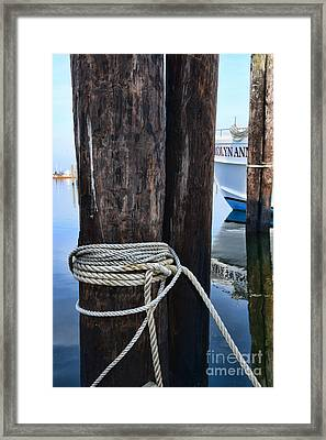 Ropes And Pilings Framed Print by Paul Ward