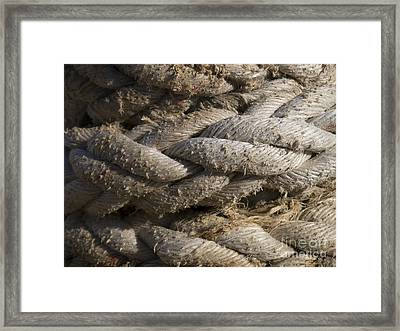 Ropes Framed Print by Gillian Singleton