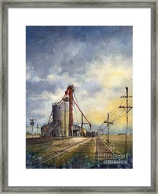 Ropes Grain Framed Print by Tim Oliver