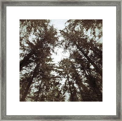 Framed Print featuring the photograph Rorschach Trees by Karen Stahlros