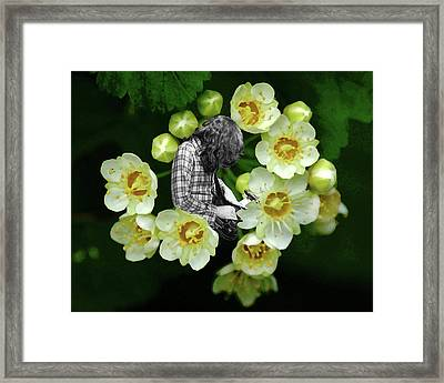 Framed Print featuring the photograph Rory Flower by Ben Upham