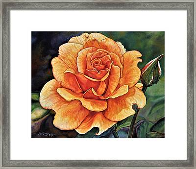 Rose 4_2017 Framed Print
