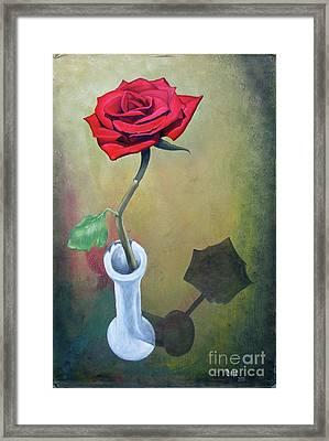 Rose 45 Framed Print