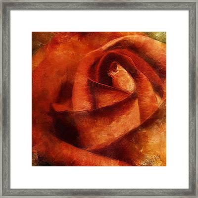 Rose 4854 Framed Print
