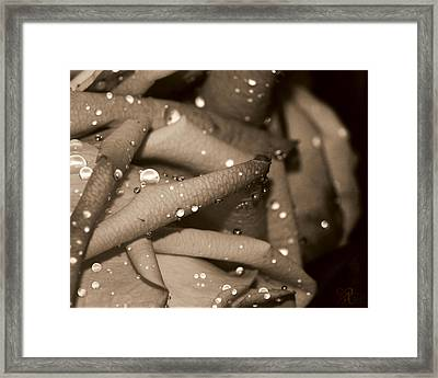 Rose And Water June Framed Print by Karen Musick