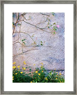 Framed Print featuring the photograph Rose And Yellow Flowers by Silvia Ganora
