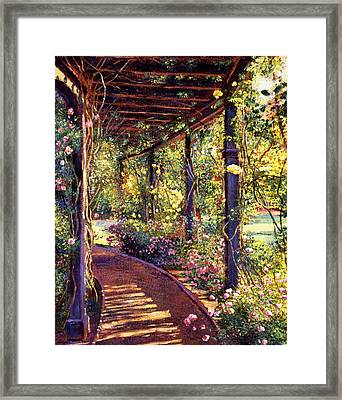 Rose Arbor Toluca Lake Framed Print by David Lloyd Glover