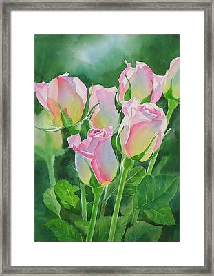 Rose Array Framed Print by Sharon Freeman