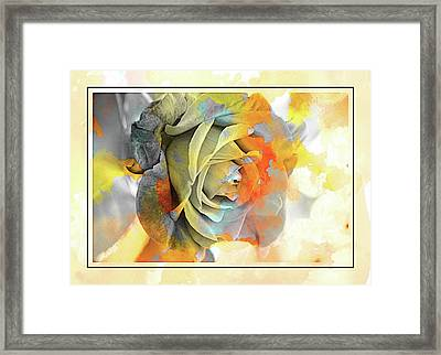 Framed Print featuring the photograph Rose Bud by Athala Carole Bruckner