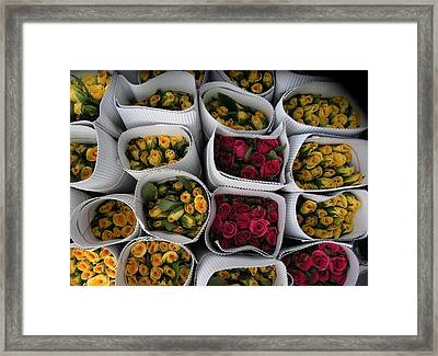 Rose Bunches Framed Print by Mohammed Nasir