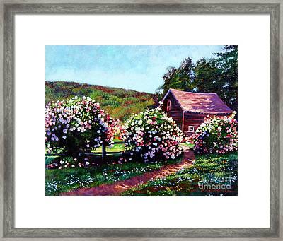 Rose Bushes Framed Print by David Lloyd Glover