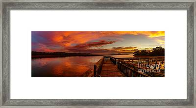 Rose Colored Classes Framed Print by David Smith