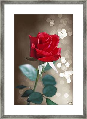 Rose Framed Print by Davonte Bailey