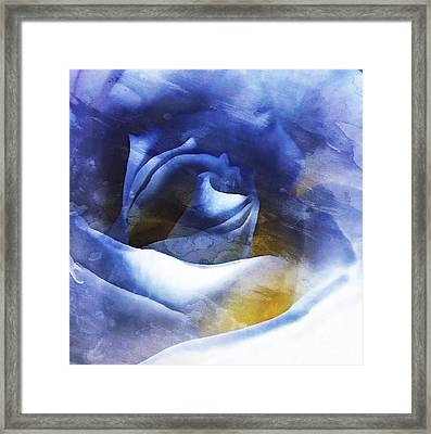 Framed Print featuring the photograph Rose - Daydreams - Dreamscape by Janine Riley