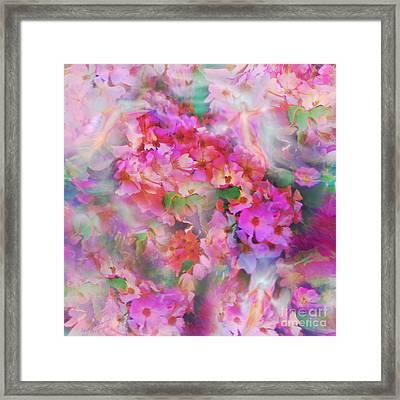 Rose Devas Framed Print