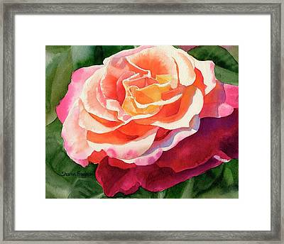 Rose Fringed With Red Petals Framed Print by Sharon Freeman