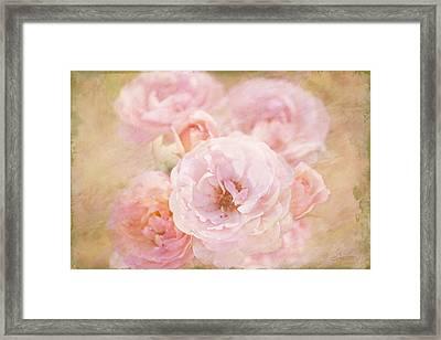 Rose Garden 1 Framed Print